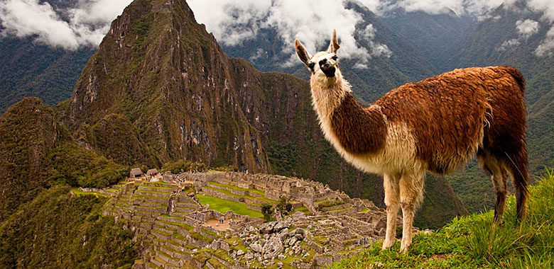 Machupicchu 2 D/ 1 N Por Hidroelectica - Machu Picchu by Car 2D/1N